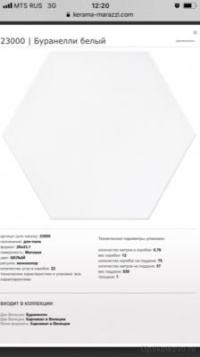 Тропический душ, краска Beckers 9л, плитка гексагон - IMG_1548.PNG